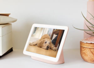 pet cam, pet monitor, baby monitor, baby camera